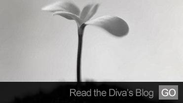 diva_0002_Layer 9